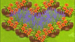 Как украсить ферму в Hay Day